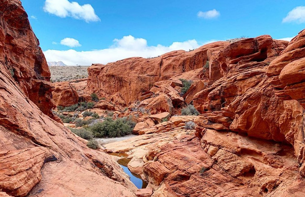 Red Rock Canyon National Conservation Area in USA